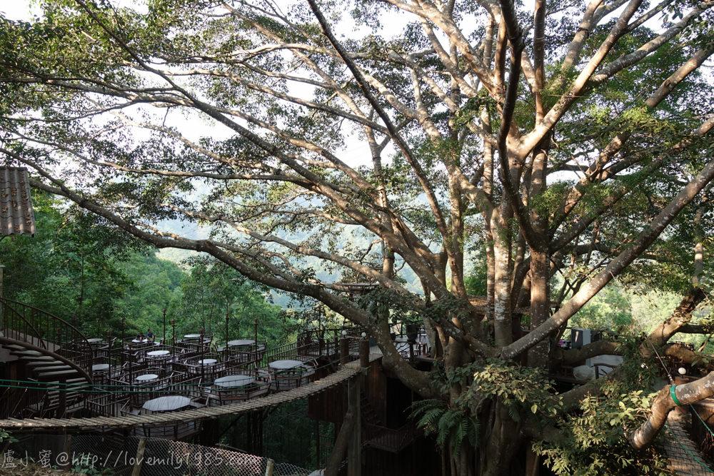 【泰國。清邁】超親近動物的親子自由行 Day2-2 The Giant Chiangmai Thailand/巨樹咖啡屋