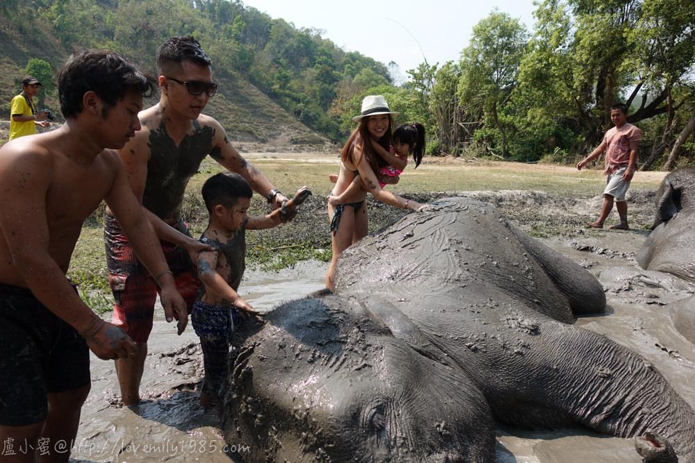 【泰國。清邁】超親近動物的親子自由行 Day3-2 推薦必玩景點!友善大象體驗營。不騎大象,陪大象一整天(下午:跟大象一起玩泥巴,幫大象洗澡,有很多影片)