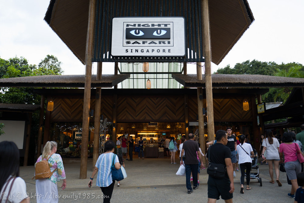 【新加坡親子遊】新加坡夜間動物園Night Safari~終極反推文!不知道在紅什麼,超無言+暴走的,對比清邁夜間動物園
