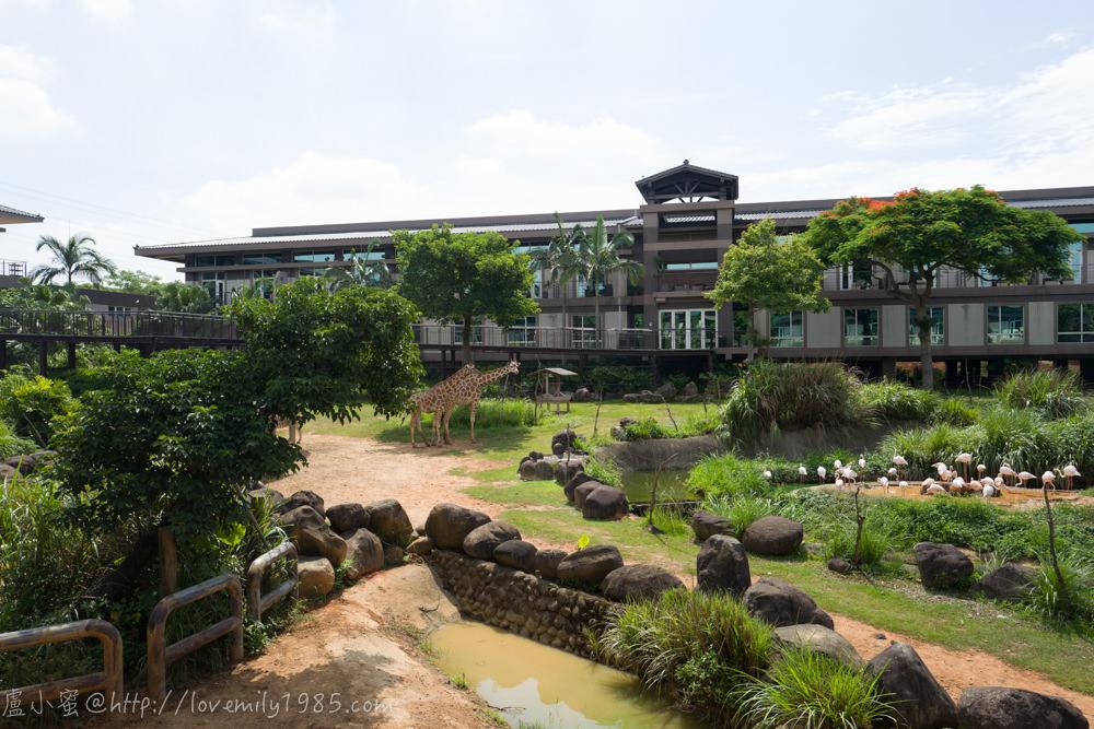 【新竹親子飯店】關西六福莊生態度假旅館/Leofoo Resort Guanshi。亞洲唯一結合自然生態教育與草食性動物渡假飯店(肯亞綠地樓中樓/早餐篇)